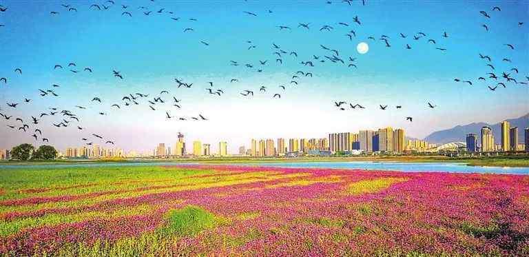 中国人均gdp 2020年 九江GDP全国第80位 人均GDP全国第101位