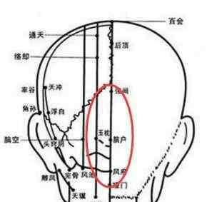 尺侧和桡侧怎么区分 手上有四个穴位 可疗一切头疼